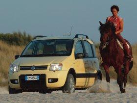 Ver foto 37 de Fiat Panda 4x4 2004
