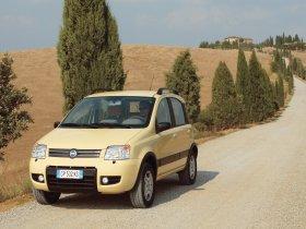 Ver foto 33 de Fiat Panda 4x4 2004