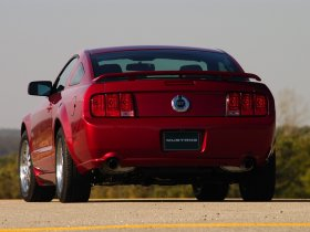 Ver foto 34 de Ford Mustang 2005