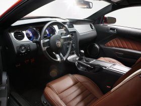 Ver foto 39 de Ford Mustang 2010