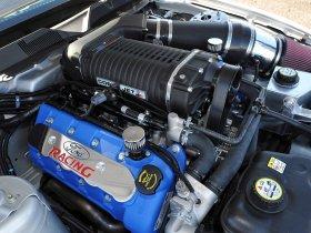 Ver foto 7 de Ford Mustang Cobra Jet 2010