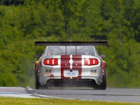 Ver foto 6 de Ford Mustang GT3 2010