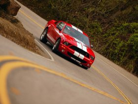 Ver foto 8 de Ford Mustang Shelby GT500 2007