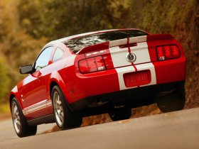 Ver foto 7 de Ford Mustang Shelby GT500 2007