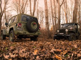 Ver foto 6 de Jeep Wrangler Willys by Geiger 2017