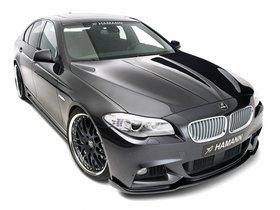 Ver foto 4 de BMW 5-Series M Technik F10 hamman 2011