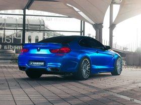 Ver foto 6 de Hamann BMW M6 Mirr6r F12 2013