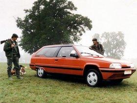 Ver foto 2 de Citroen Heuliez BX Break De Chasse Dyana Prototype 1986