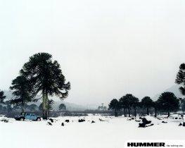 Ver foto 3 de Hummer H1 2003