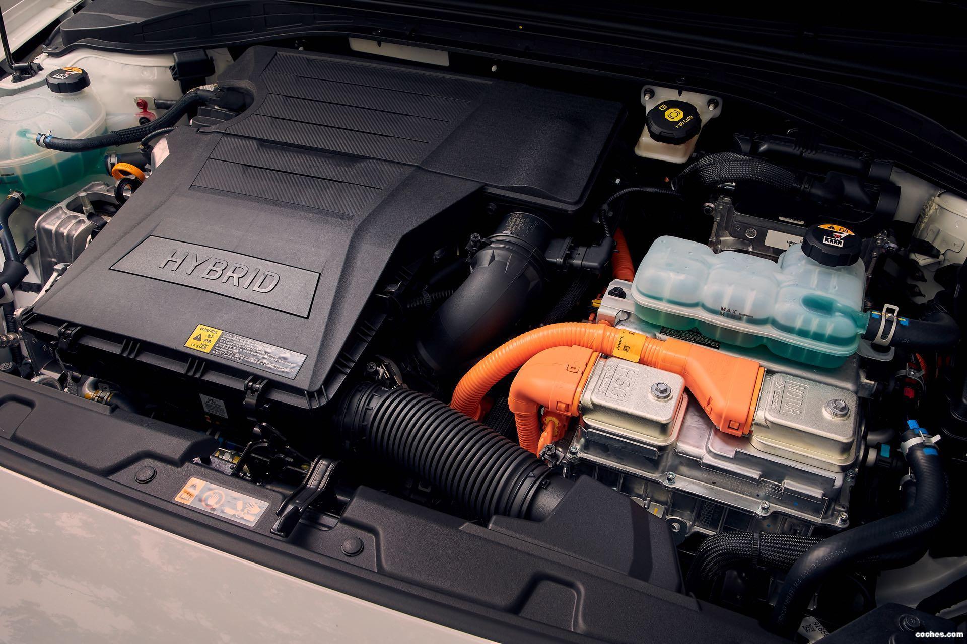 Foto 23 de Hyundai Ioniq Hybrid 2019