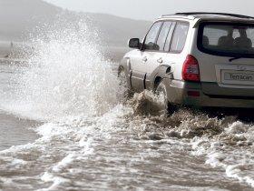 Ver foto 3 de Hyundai Terracan 2005