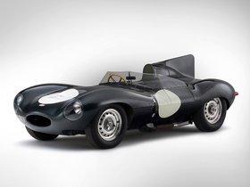 Ver foto 4 de Jaguar D-Type 1955