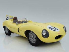 Ver foto 3 de Jaguar D-Type 1955