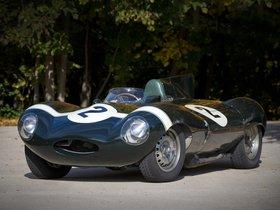 Ver foto 1 de Jaguar D-Type 1955