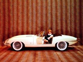 Ver foto 3 de Jaguar E-Type Roadster Series I 1961