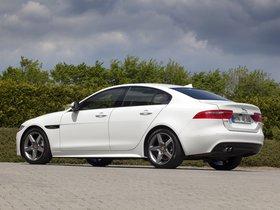 Ver foto 13 de Jaguar XE R Sport 2015