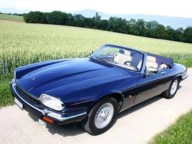 Ver foto 5 de Jaguar XJS Convertible 1975
