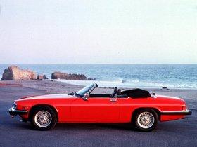 Ver foto 3 de Jaguar XJS Convertible 1975