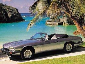 Ver foto 2 de Jaguar XJS Convertible 1975