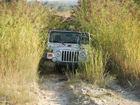 Ver foto 18 de Jeep Wrangler 2005