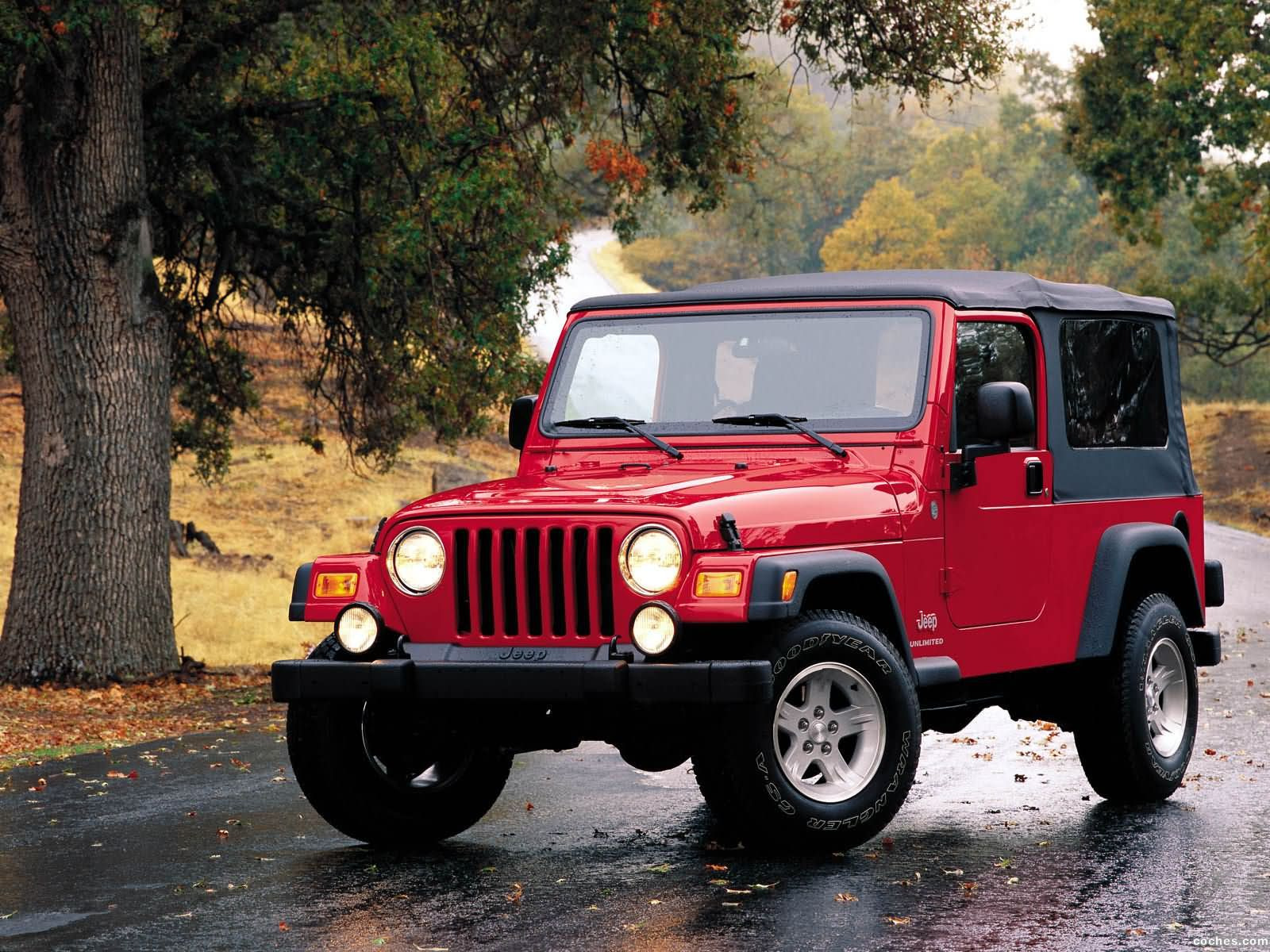 Foto 0 de Jeep Wrangler Unlimited 2004