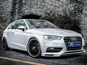 Fotos de JMS Racelook Audi S3 2013