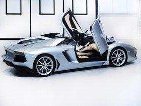 Ver foto 24 de Lamborghini Aventador LP700-4 Roadster 2013