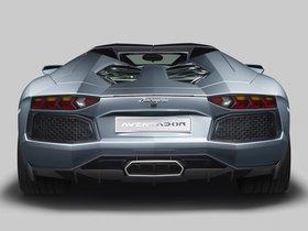 Ver foto 47 de Lamborghini Aventador LP700-4 Roadster 2013