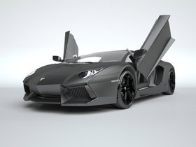 Ver foto 1 de Lamborghini Aventador Vitesse 2015