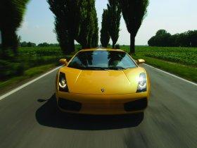 Ver foto 14 de Lamborghini Gallardo 2003