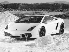 Ver foto 9 de Lamborghini Gallardo LP560 4 2008