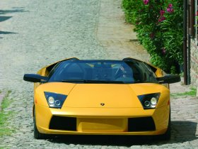Ver foto 14 de Lamborghini Murcielago Barchetta 2004