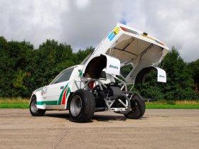 Ver foto 5 de Lancia Beta S2 Gruppe 4