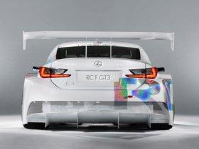 Ver foto 13 de Lexus RC-F GT3 Concept 2014
