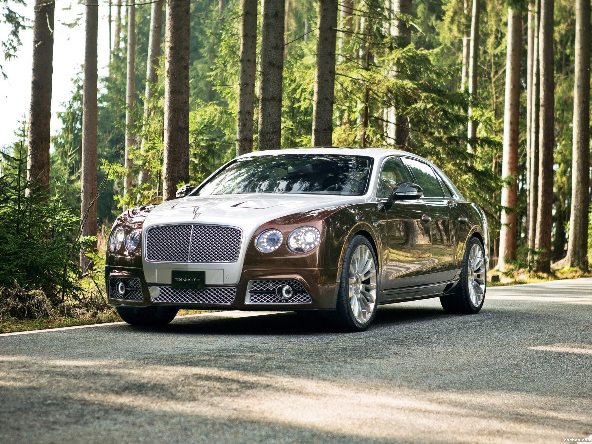 Foto 0 de Mansory Bentley Continental Flying Spur 2014