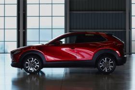Ver foto 14 de Mazda CX-30 SkyActive-X 2019