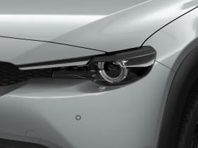 Ver foto 16 de Mazda MX-30 1st Edition 2020
