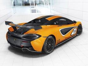 Ver foto 8 de McLaren 570S GT4 2016