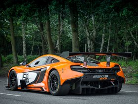 Ver foto 10 de McLaren 650S GT3 2014