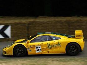 Ver foto 13 de McLaren F1 GTR 1995