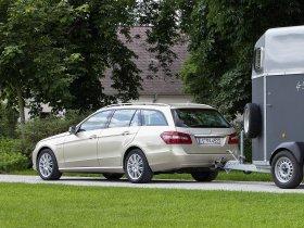 Ver foto 12 de Mercedes Clase E Estate E250 CDI  2009