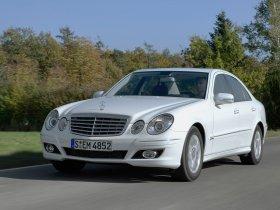 Ver foto 8 de Mercedes Clase E E300 Bluetec V211 2008