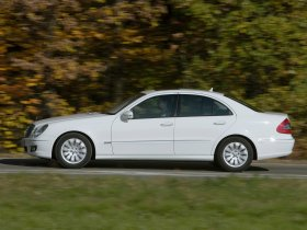 Ver foto 7 de Mercedes Clase E E300 Bluetec V211 2008