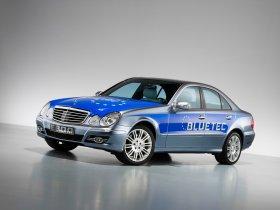 Ver foto 3 de Mercedes Clase E E300 Bluetec V211 2008