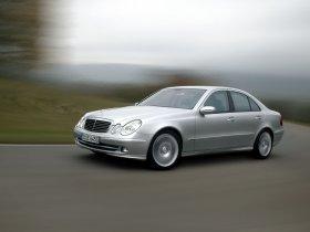 Ver foto 20 de Mercedes Clase E E350 W211 2003