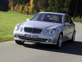 Ver foto 14 de Mercedes Clase E E350 W211 2003