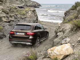 Ver foto 4 de Mercedes GLC 250 d 4MATIC X205 2015