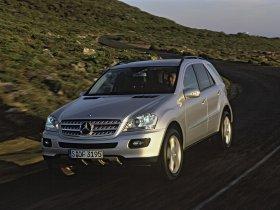 Ver foto 4 de Mercedes Clase M ML 2005