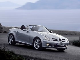 Ver foto 2 de Mercedes SLK 2004