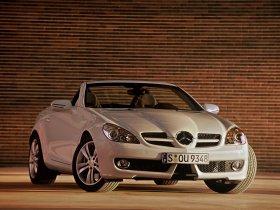Ver foto 5 de Mercedes SLK Facelift 2008
